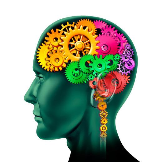 Un ratio magique pour votre cerveau ?