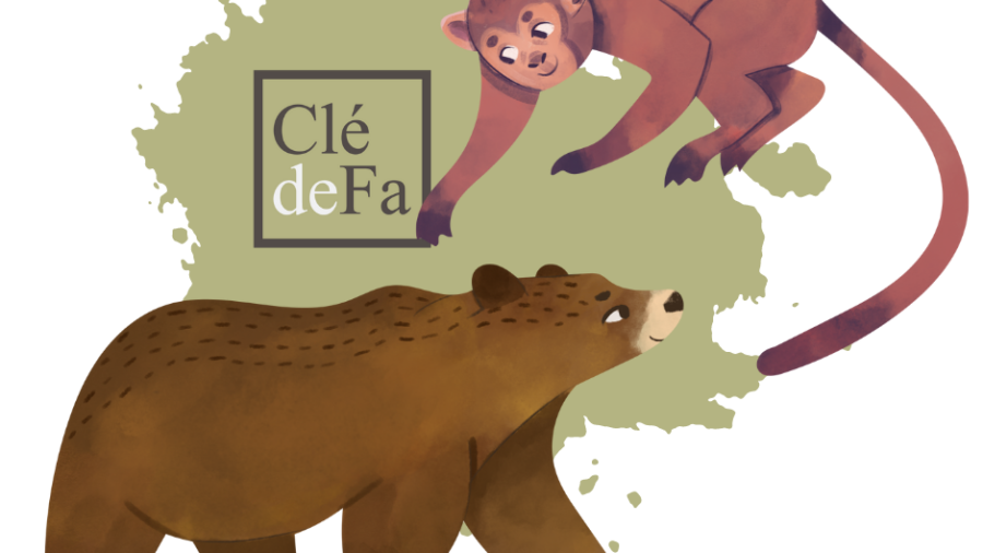 Clé de Fa - Ours et Singe